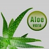 Aloe Vera Drinks Earn 'Avoid' Rating from CSPI
