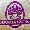 Fleishman, Chief Marketing Officer, Leaves Sambazon