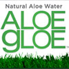 Video: Aloe Gloe Finds its Sweet Spot